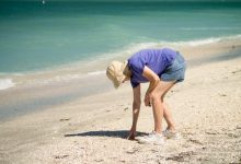 Photo of 5 Reasons Seashells and Sand Should Stay in Your Favorite Beach Resorts