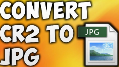 Photo of How to Convert a CR2 Image File to JPG Online